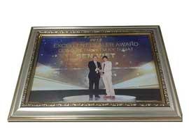 dieu-hoa-sen-viet-nhan-giai-Exellent-Dealer-Award