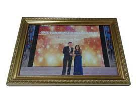 dieu-hoa-sen-viet-nhan-giai-Good-Performance-in-Packaged-Award
