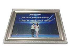 dieu-hoa-sen-viet-nhan-giai-Top-Sales-in-Region-Award